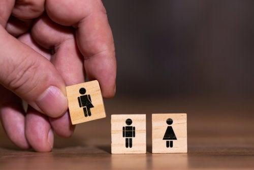 Fichas de identidad de género.