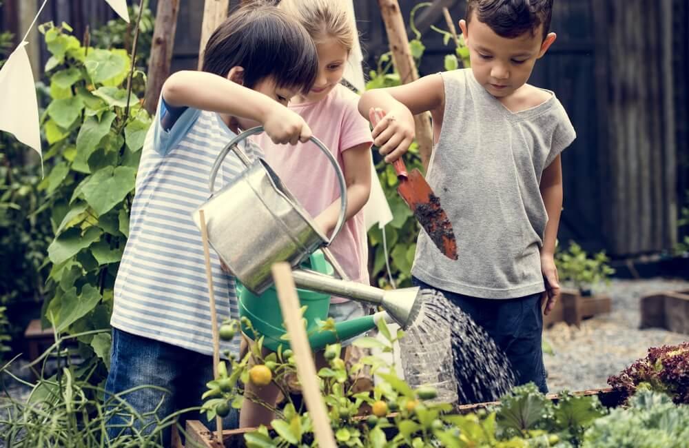 El aprendizaje vivencial y su importancia