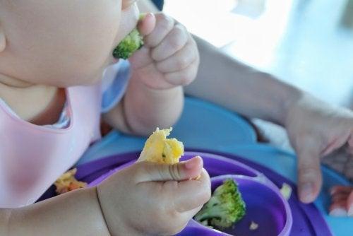 Bebé comiendo mediante la técnica del Baby Led Weaning.