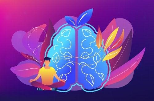 Cerebro mindfulness.