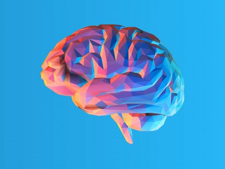 Qué es la teoría de la carga cognitiva