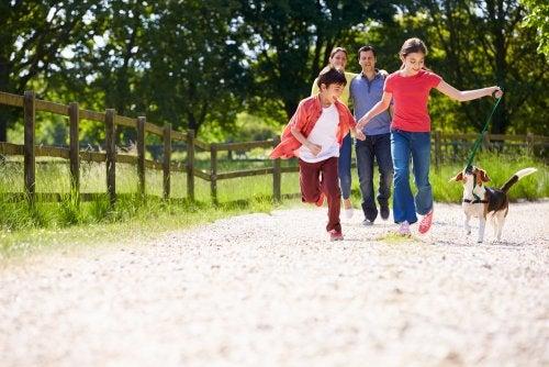 Familia reconstituida dando un paseo por el campo con el perro.