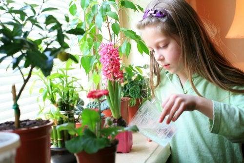 ¿Qué responsabilidades puede asumir un niño de 8 a 12 años?