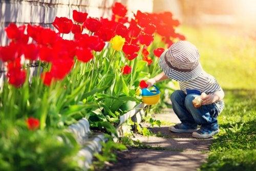 Descubre los jardines a través de la literatura infantil