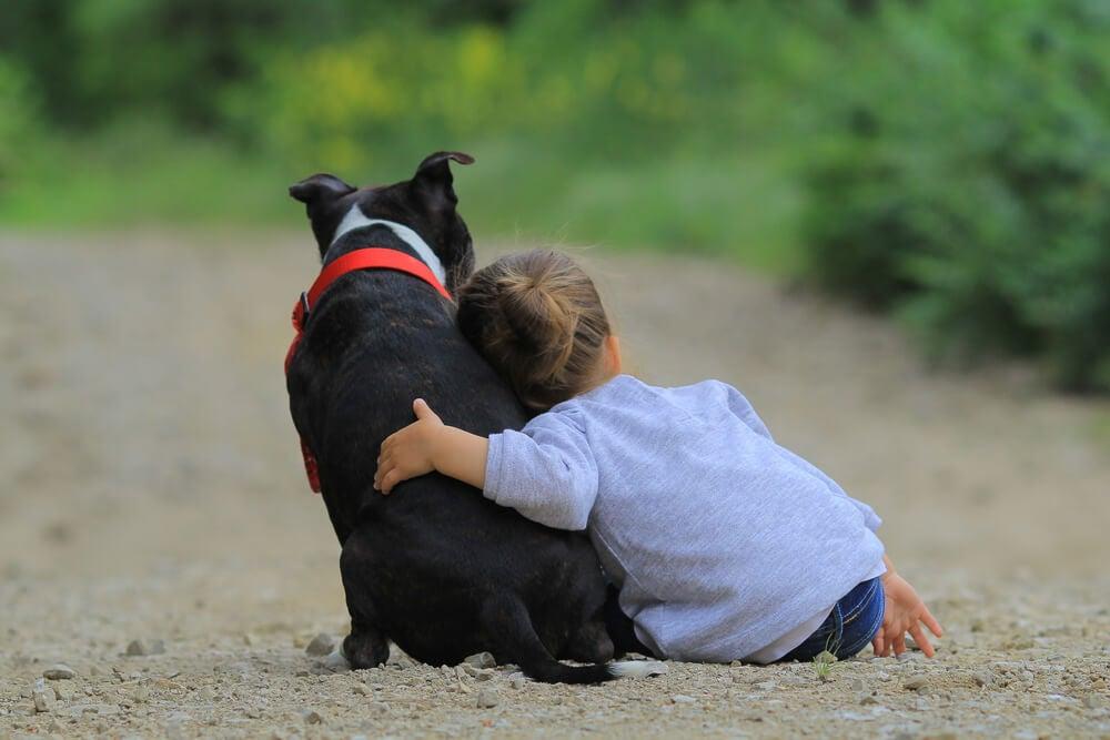 Concienciar a los niños sobre la adopción de animales