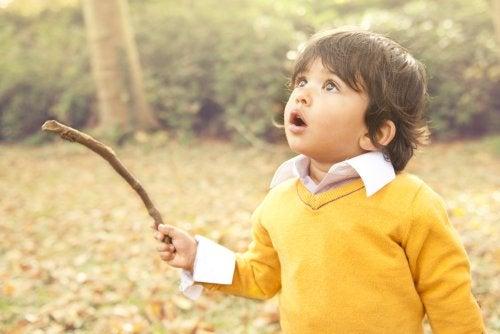 Niño en el campo con un malo de madera con cara de asombro.