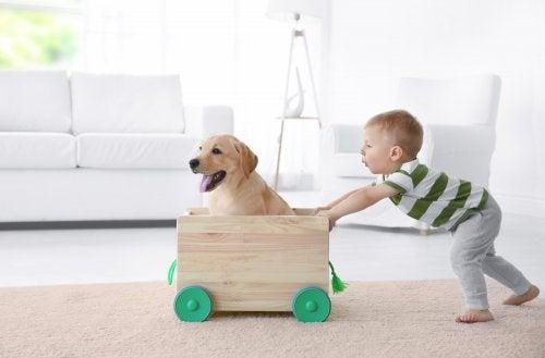 Niño jugando en casa con su perro.