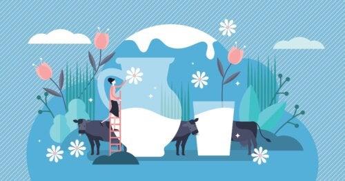5 datos de la lactosa que debemos saber