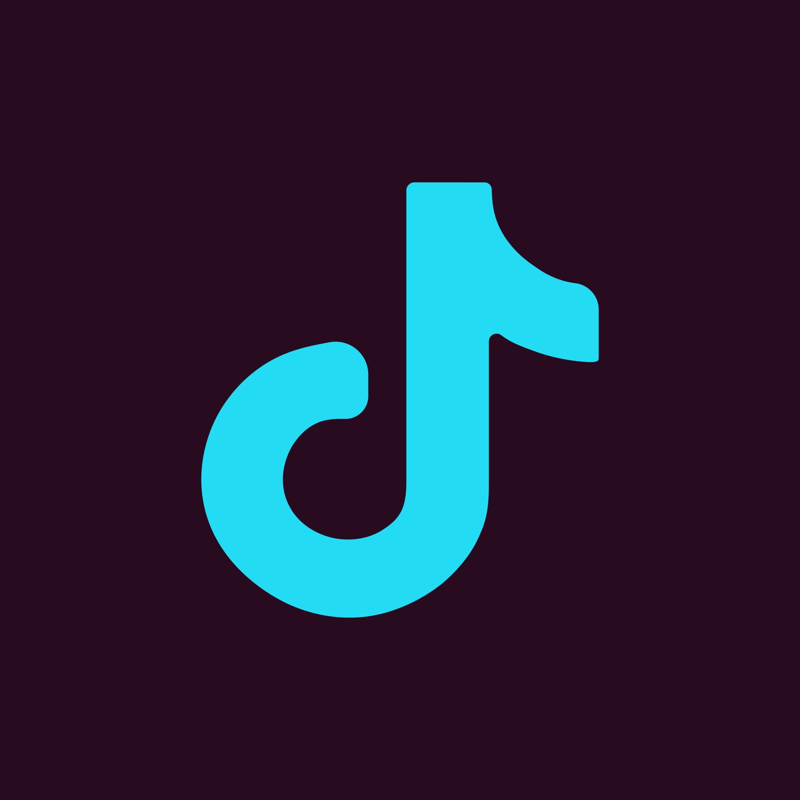 ¿Es TikTok la red social más de moda en la actualidad?