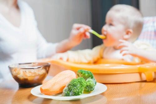 Introducción de los alimentos en bebés de manera segura