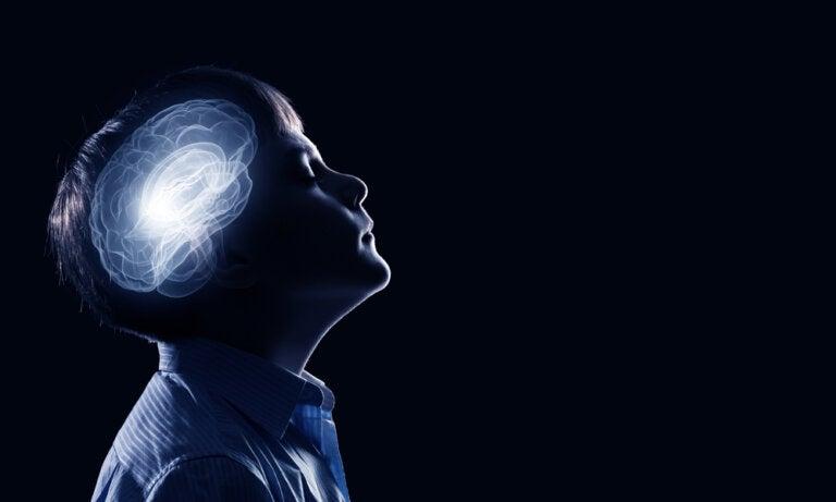 La poda sináptica en la infancia y la adolescencia