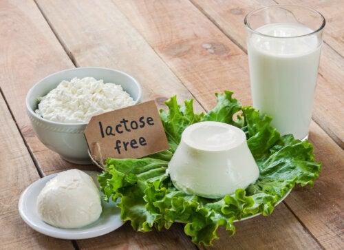 Productos sin lactosa.