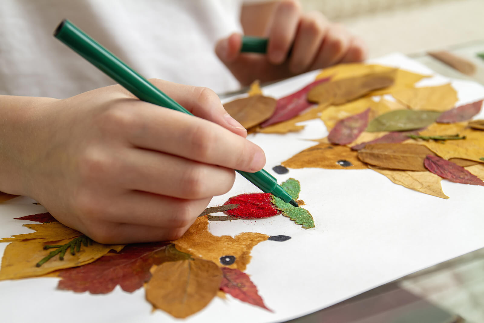 Manualidades con hojas secas para aprender sobre las plantas.