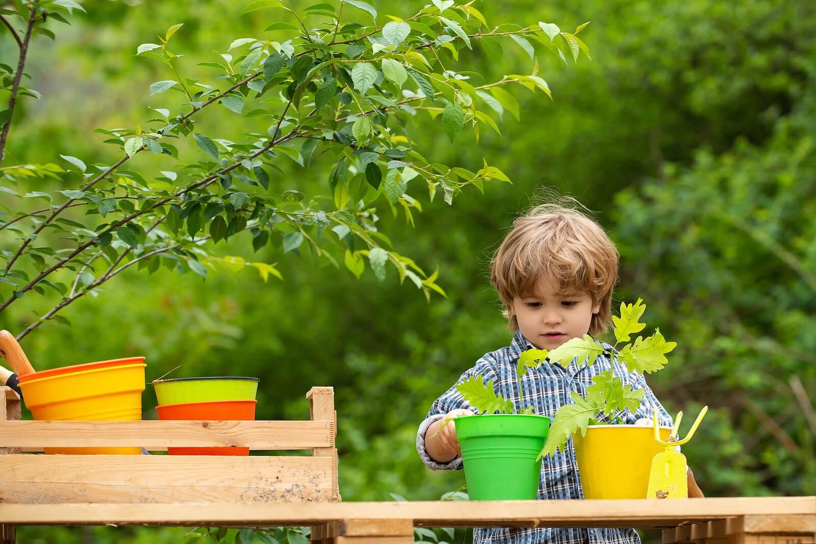Niño plantando plantas en el jardín.