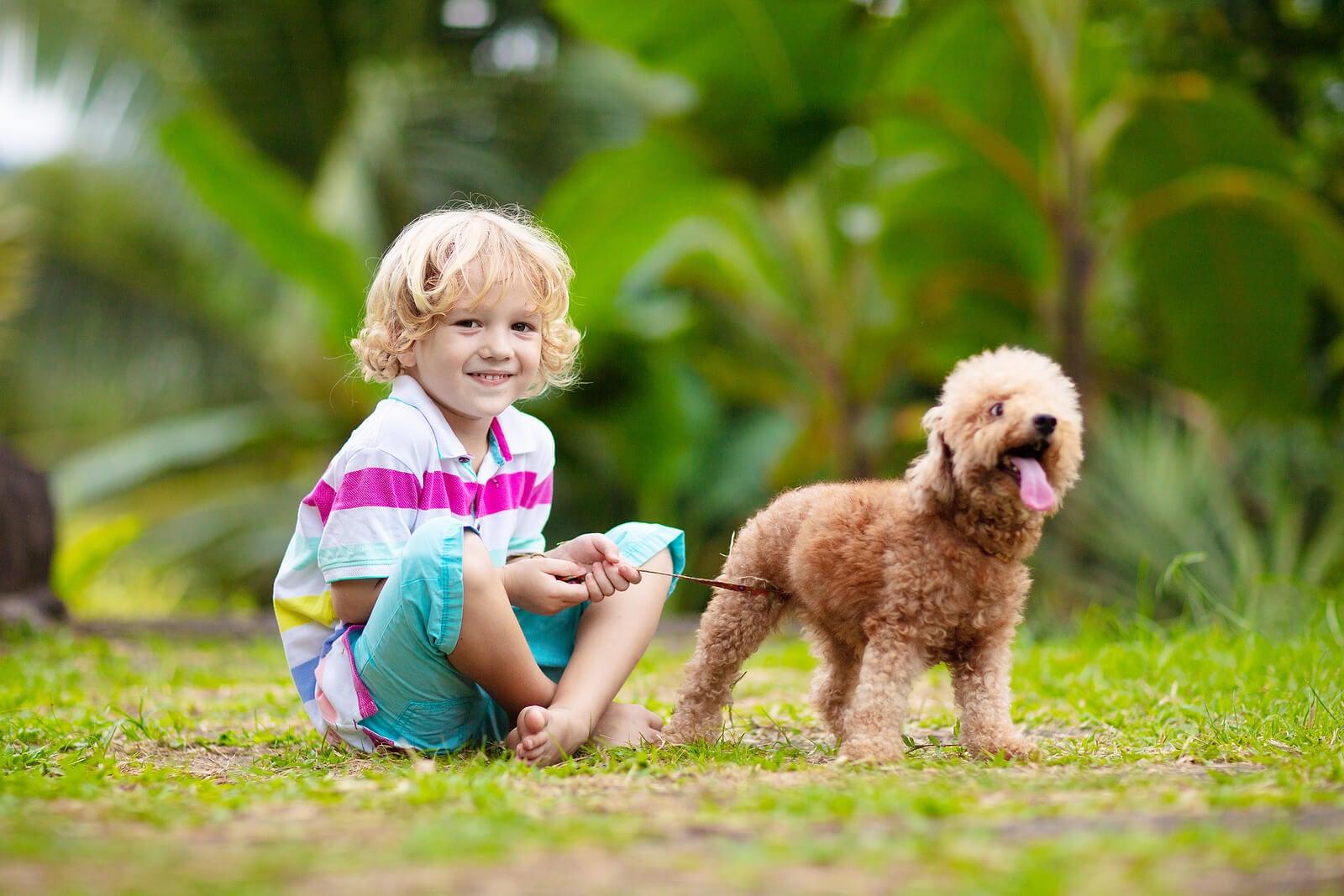 Niño alegre paseando al perro, pues la alegría es uno de los estados de ánimo que favorecen el aprendizaje.