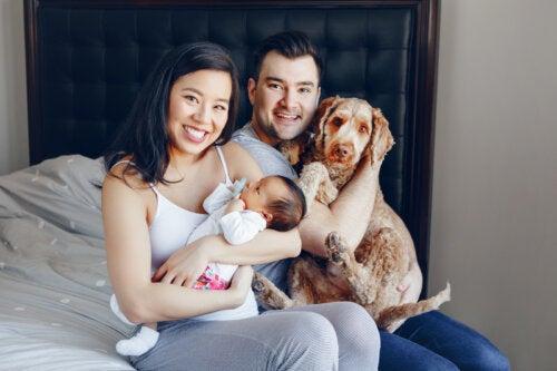 6 consejos para preparar a tu perro ante la llegada del bebé