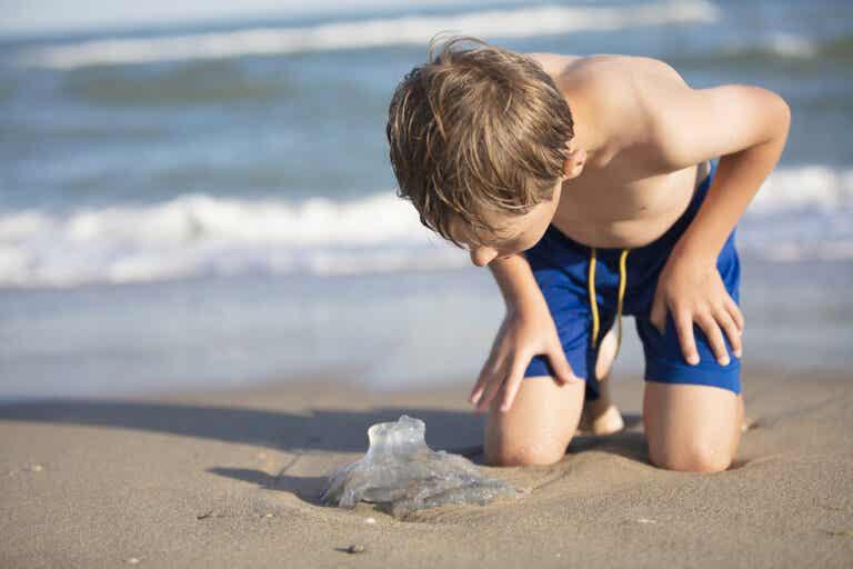 Picaduras de medusa en niños