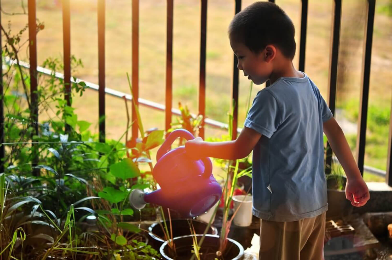 Es importante transmitir una buena educación ambiental para niños y tener presente la pedagogía Cossettini.
