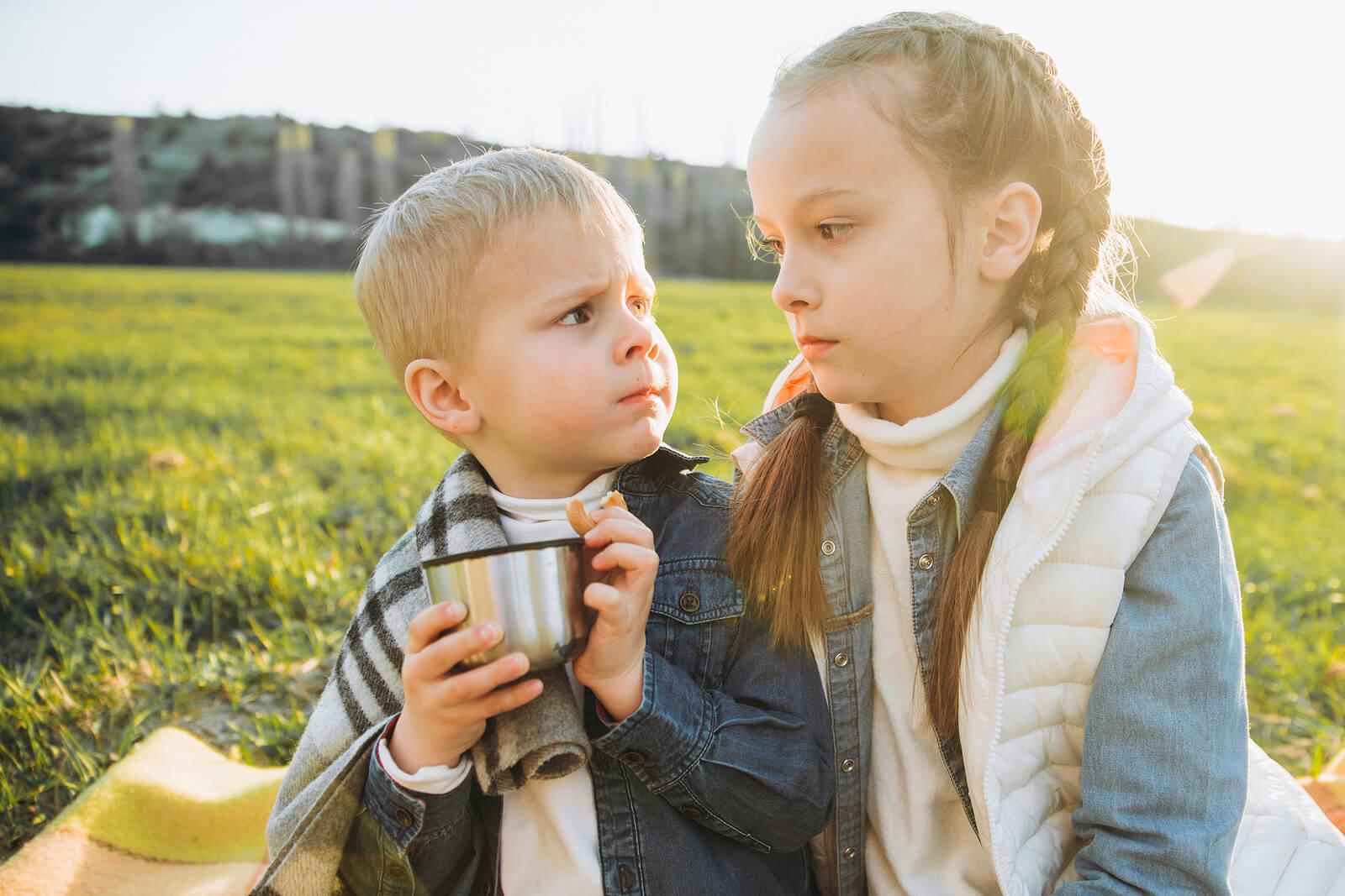 Hermanos enfadados mientras pasan un día en el campo.