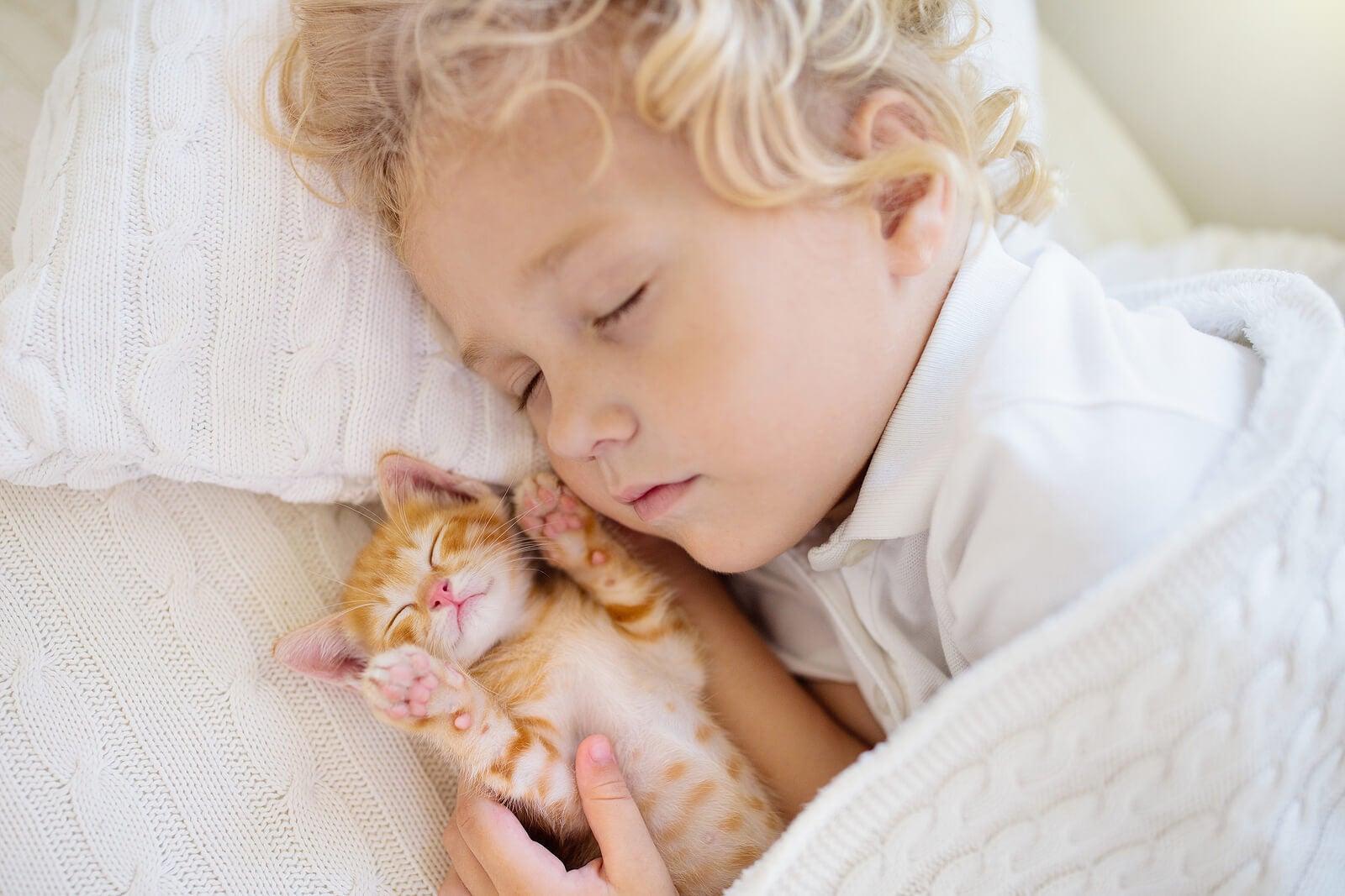 Niño durmiendo junto a su gato.