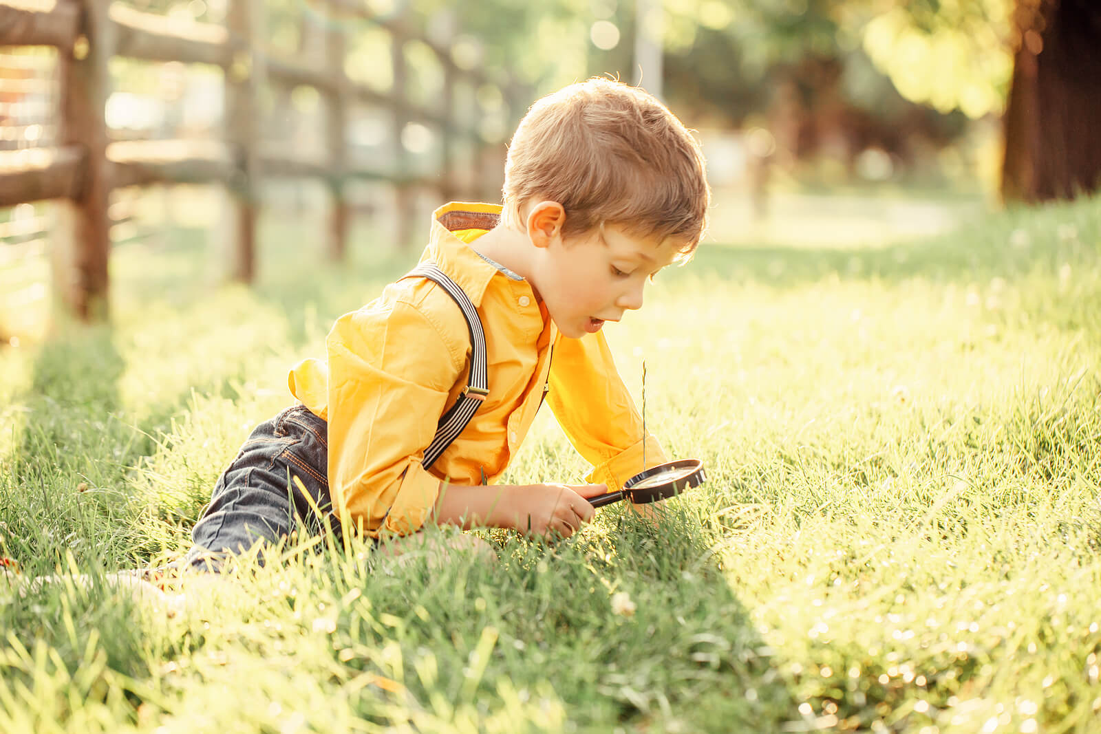 Niño explorando e investigando la naturaleza.
