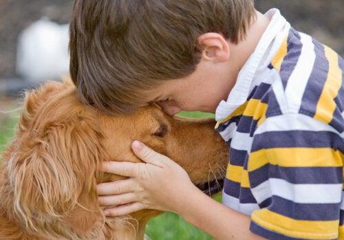 ¿Cómo decirle a un hijo que su mascota ha muerto?