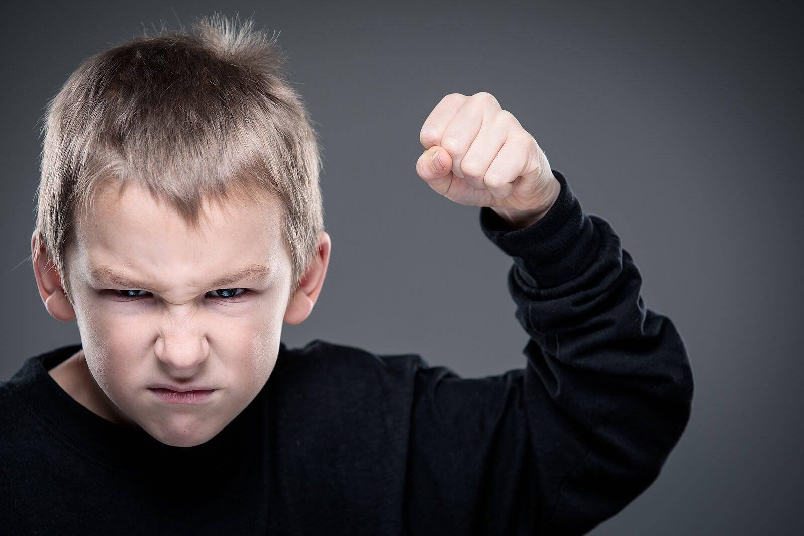 Niño con el puño levantado dispuesto a pegar debido al modelado negativo de casa.