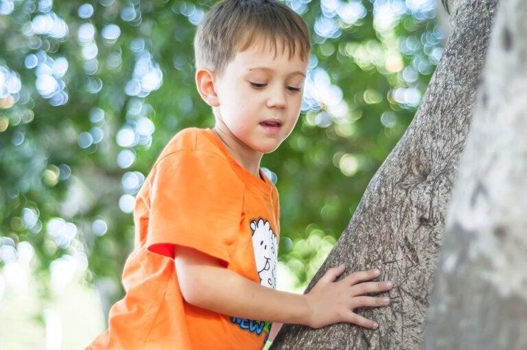 El miedo a las alturas en los niños