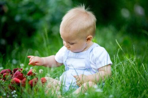 Alergia LTP en niños