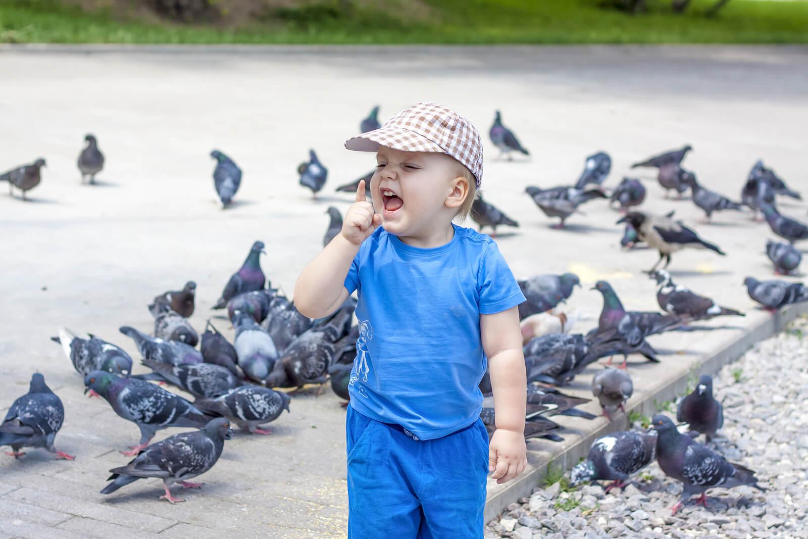 Niño gritando porque tiene miedo a los pájaros.
