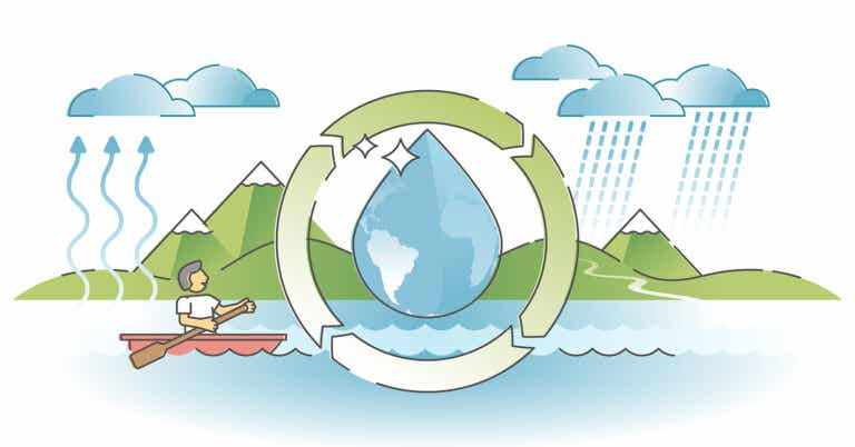 El ciclo del agua para niños: claves para explicarlo