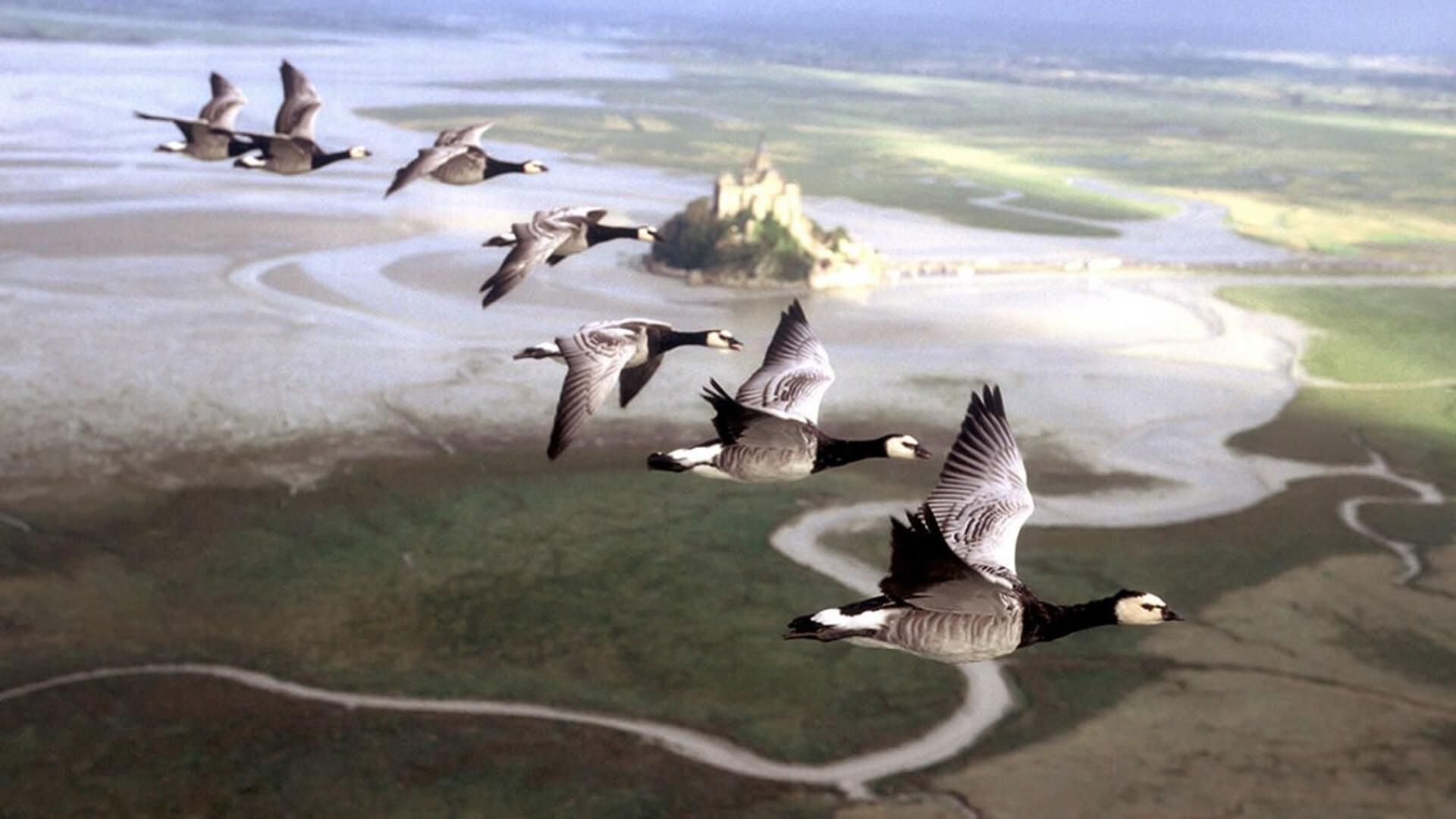 Imagen de una de las películas para la asignatura de Geografía.