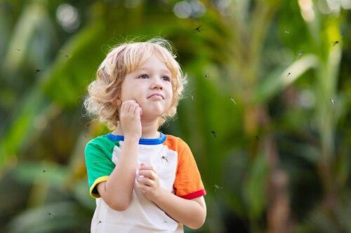 Alergia a las picaduras en bebés y niños