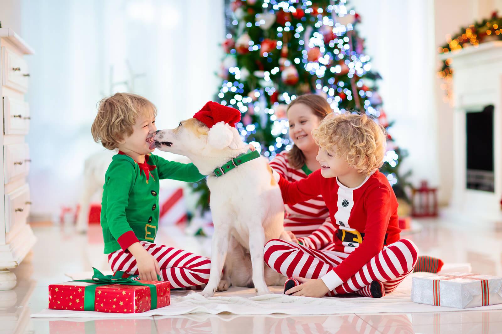 Niños aprendiendo los valores de la Navidad junto a su perro.