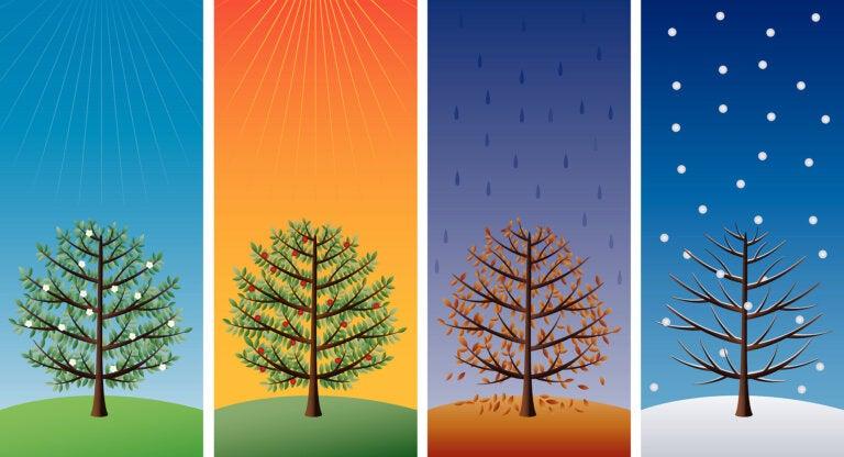 3 manualidades de las estaciones del año