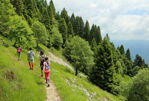 Las 5 mejores excursiones para hacer con niños