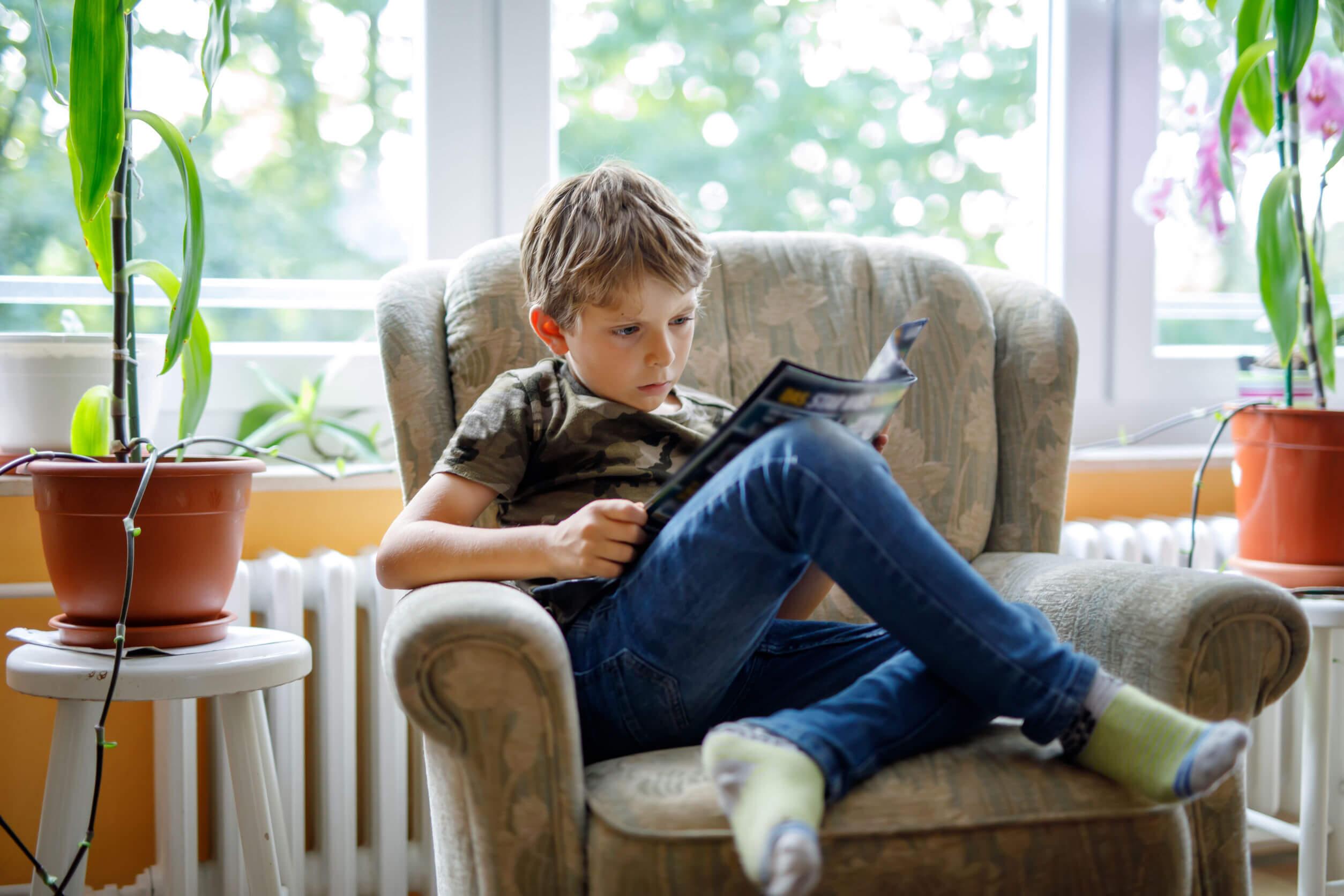 Chico leyendo cómics para niño en el sillón de casa.