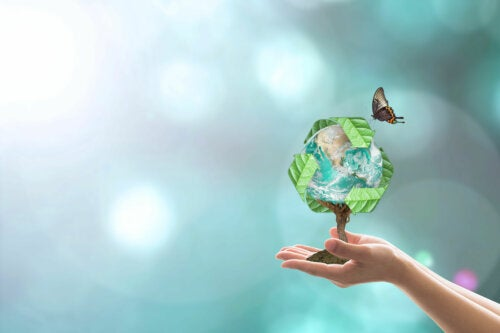 Prueba de embarazo biodegradable: ¿la mejor opción para el futuro?
