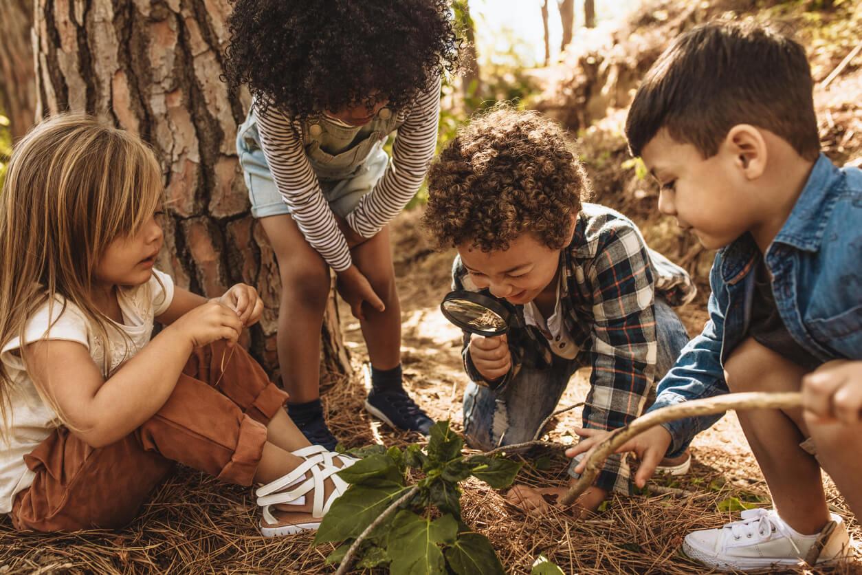 Des enfants qui explorent la nature.