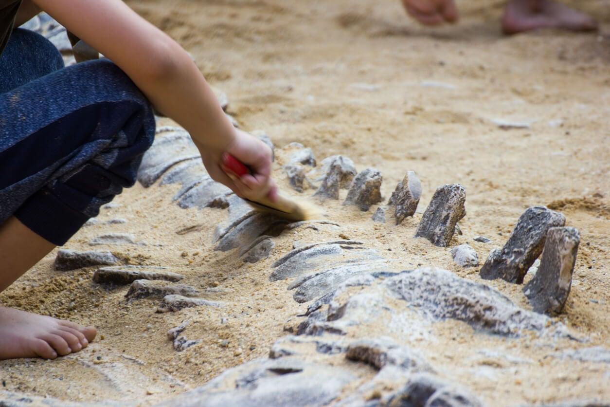 Niño paleontólogo