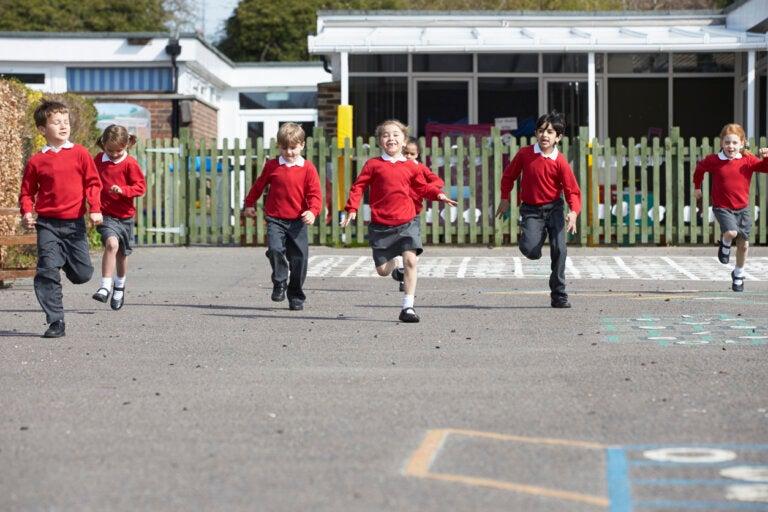 5 claves para organizar un recreo escolar