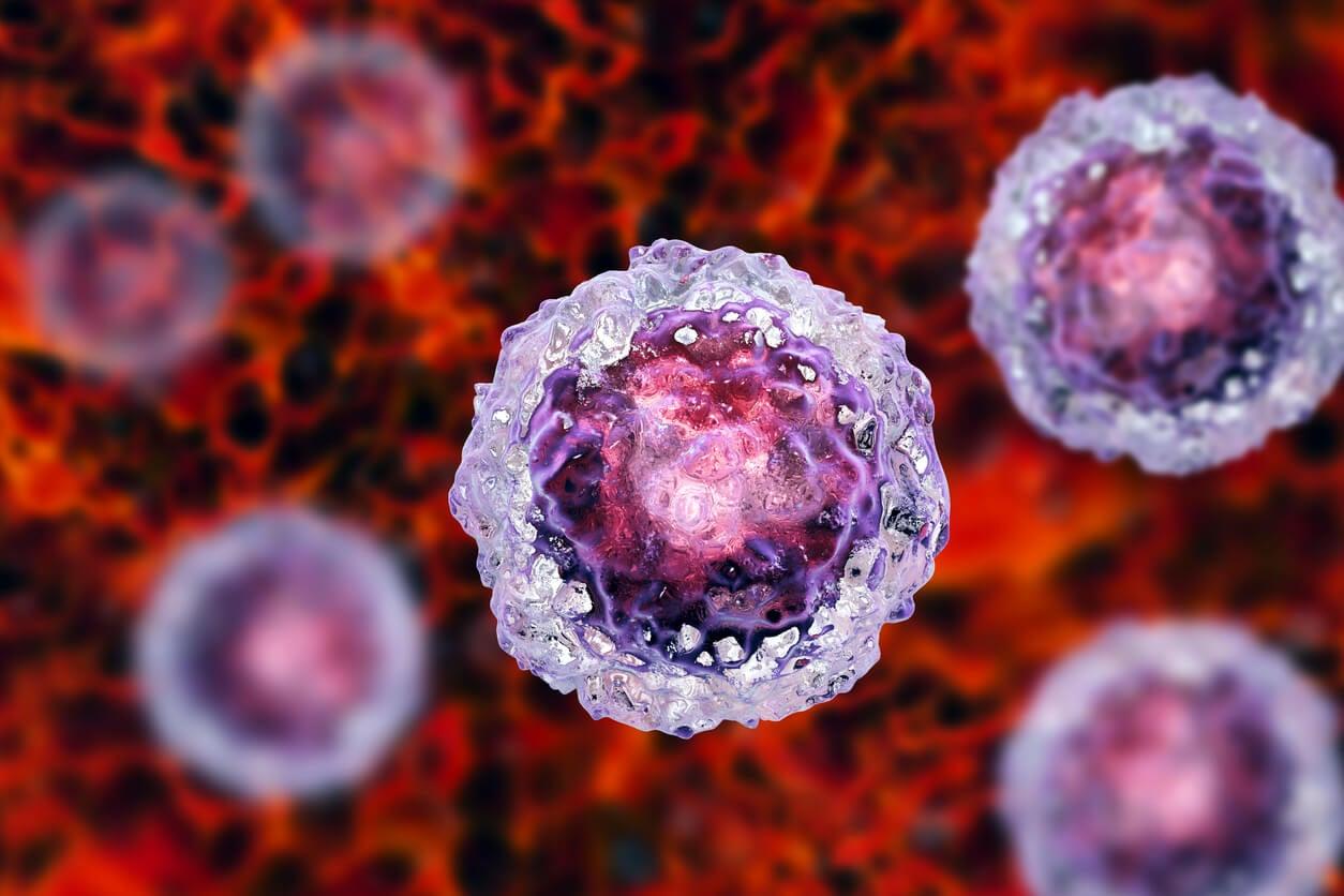 Células madre embrionarias.