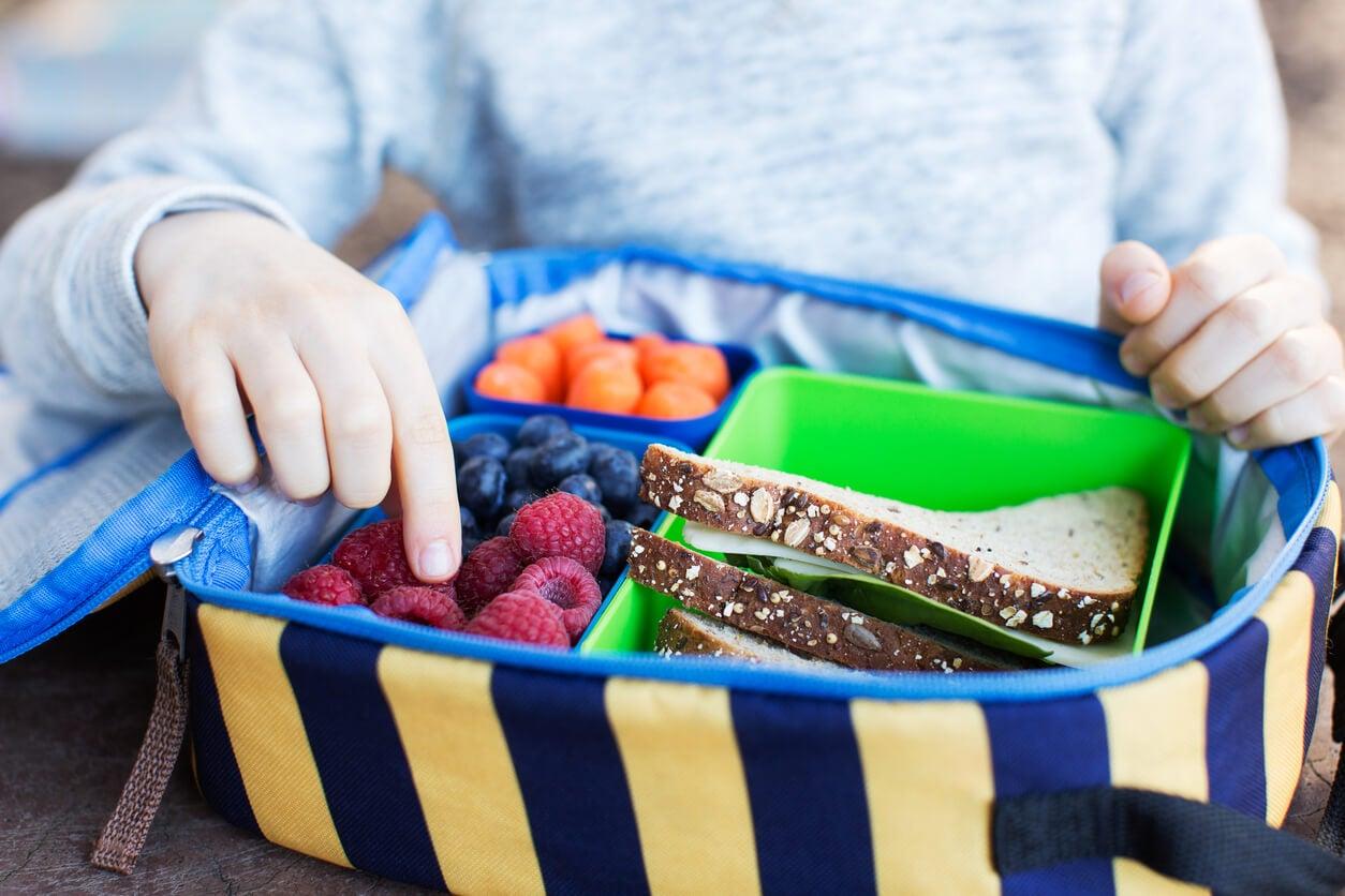 Niño con una tartera llena de comida para viajar.