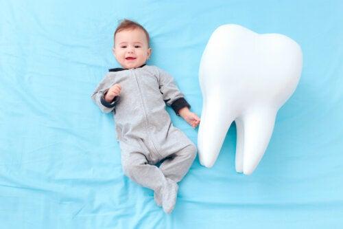 Curiosidades sobre los dientes de leche