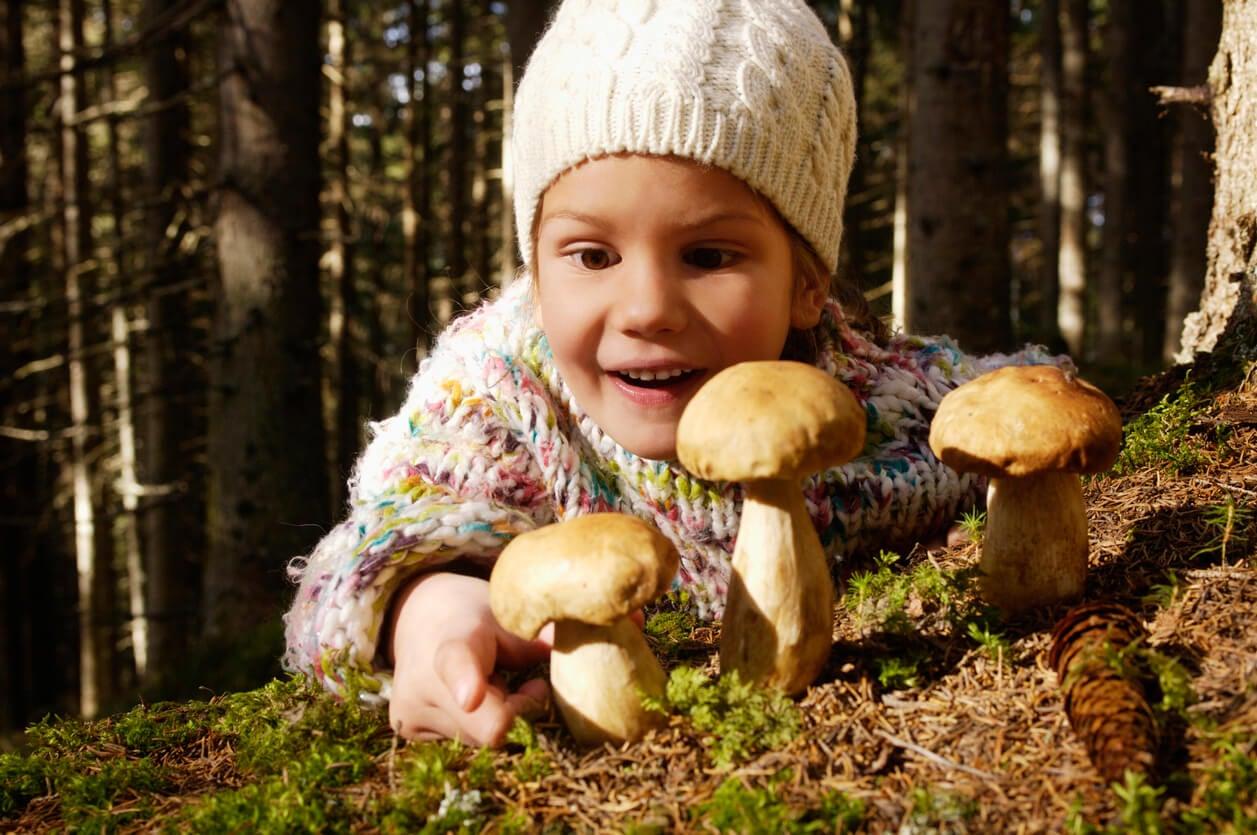 poison poison empoisonnement fille champignon herbe forêt main surprise danger accident blessure