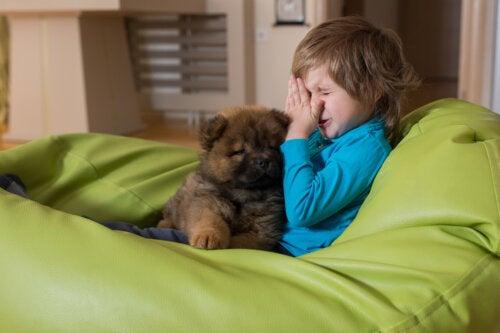 5 recomendaciones para niños con alergia a los animales