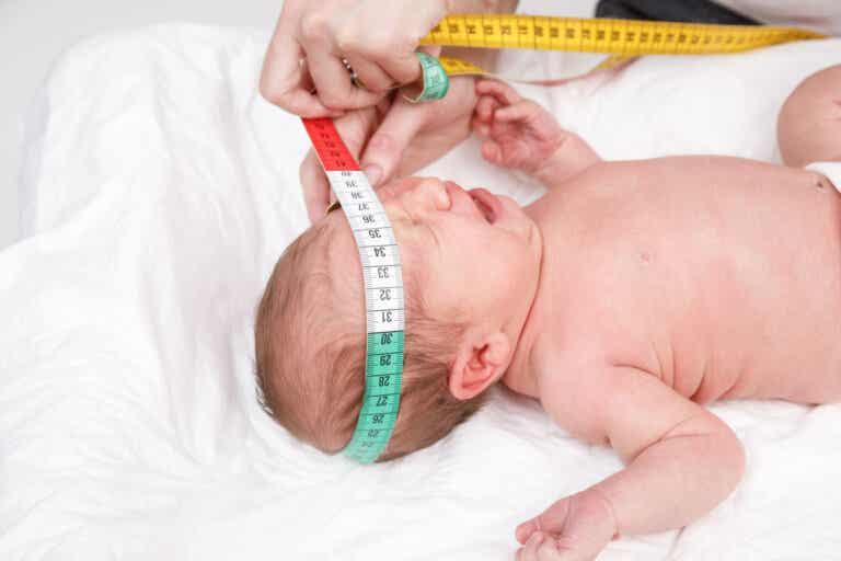 ¿Por qué el pediatra mide la cabeza de tu bebé al nacer?