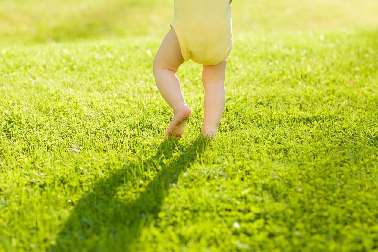 bebe lactante deambulador deambula camina descalzo pasto aire libre salud desarrollo motor psico sin zapatos