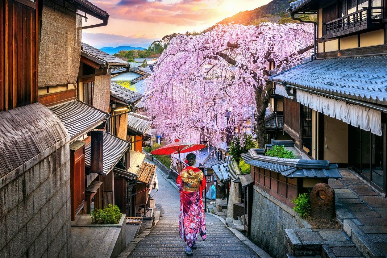 japon ciudad calles cultura icono mujer geisha camina kimono sombrilla flor cerezo