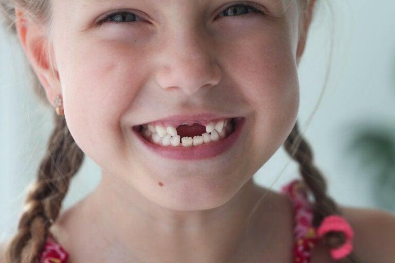 ¿Cuál es la función de los dientes de leche?